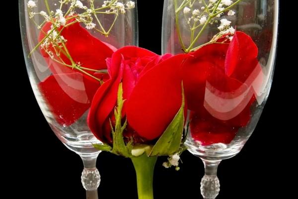 Dos copas y una rosa