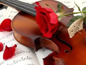 Un violín y una rosa