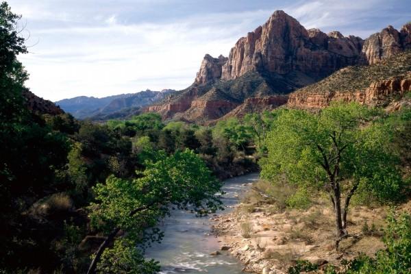 Río Virgen (Virgin River), un afluente del río Colorado