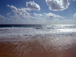 Postal: Arena húmeda de la playa