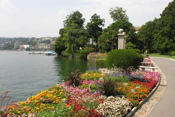 Flores a orillas del lago Lugano (Suiza)