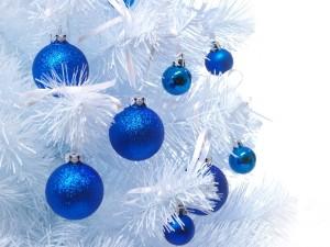 Bolas azules colgadas de un pino blanco