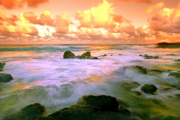 Olas llegando a una playa de Hawái