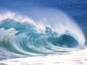 El rizo de una ola