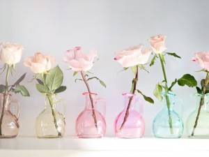 Postal: Rosas en jarritas