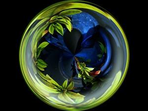 Postal: Esfera de plantas