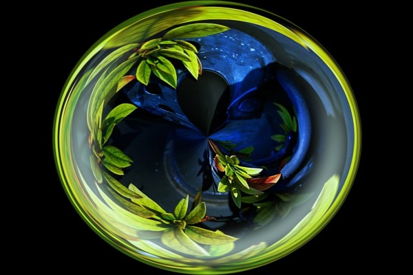 Esfera de plantas