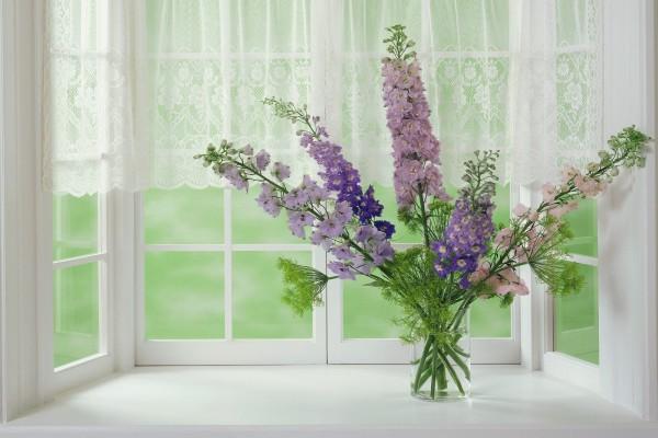Flores lilas silvestres junto a una ventana