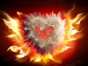 Corazón de plumas en llamas
