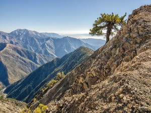 Postal: Pacific Crest National Scenic Trail