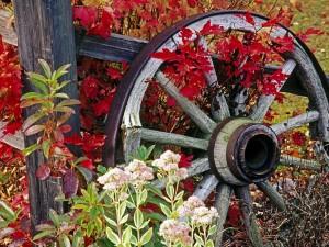 Una vieja rueda de un carro de madera