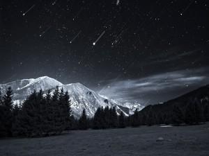 Postal: Lluvia de estrellas nocturna