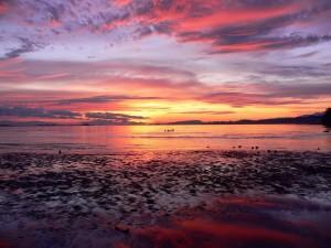 Postal: La salida del sol sobre un lago