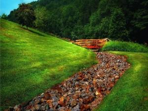 Camino de piedra flanqueado por hierba verde