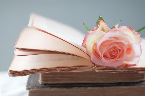 Libros antiguos y una rosa