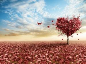 Árbol del amor perdiendo sus hojas