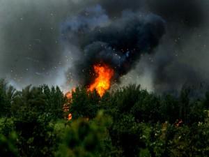 Bombardeos en una zona boscosa, Guerra de Irak
