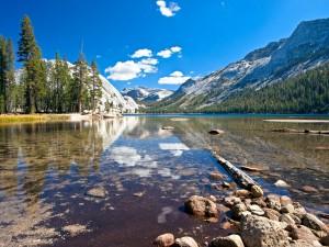 Postal: Lago Tenaya (Parque Nacional de Yosemite, California)