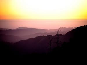 La línea del horizonte (La Honda, California)