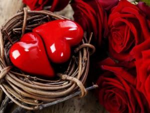 Dos corazones en una cesta, junto a unas rosas rojas