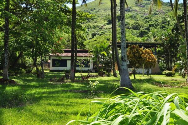 Un lugar lleno de vegetación en Brasil