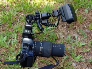 Postal: Cámara Nikon F601 analógica, con Sigma 105 EX DG macro