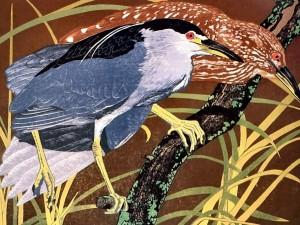 Postal: Dibujo de dos pájaros