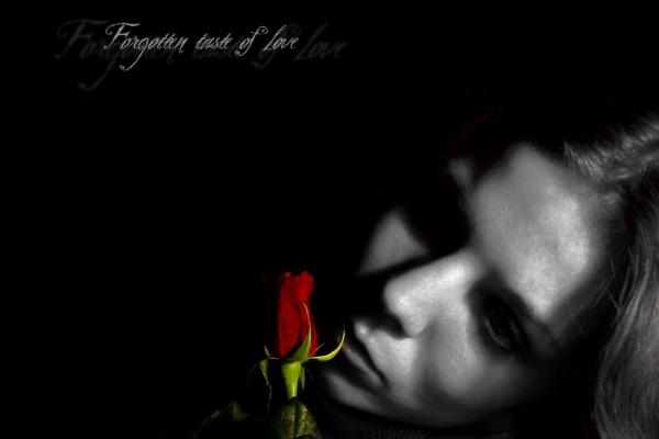 Sabor olvidado del amor
