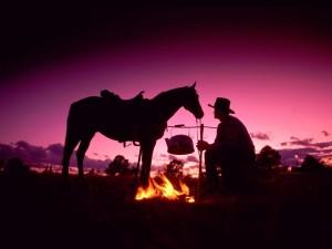 Postal: Cowboy descansando