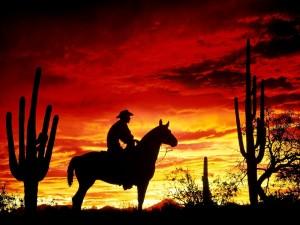 Postal: Cowboy cruzando el desierto
