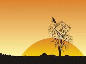 Postal: Corona de la puesta del sol