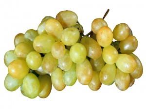 Postal: Racimo de uvas verdes