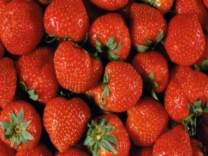Postal: Fresas rojas