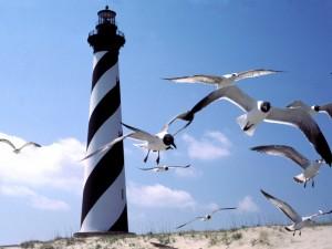 Postal: Faro del Cabo Hatteras, Carolina del Norte
