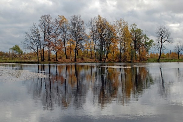 Paisaje otoñal frente a un lago cristalino