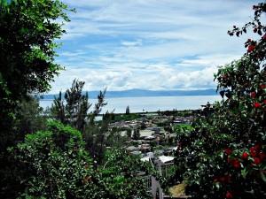 Postal: Lago de Chapala visto desde Jamay (Jalisco, México)