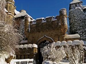 Postal: Castillo de Lichtenstein (Alemania)