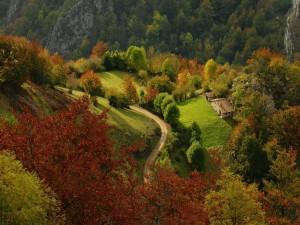 Parque natural de Redes, Asturias (España)