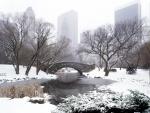 Central Park en invierno, Nueva York