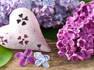 Postal: Flores lilas y un corazón blanco