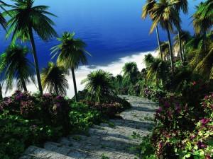 Postal: Escalones de piedra para bajar a la playa