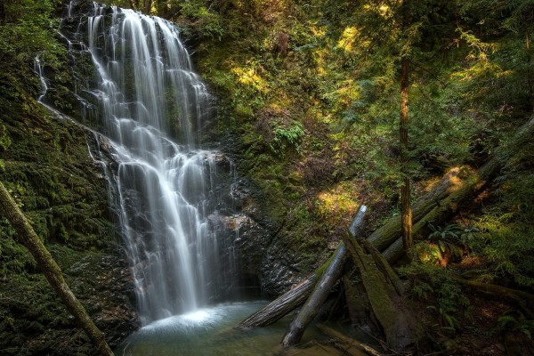 Berry Creek Falls, Parque Estatal de Big Basin Redwoods, California