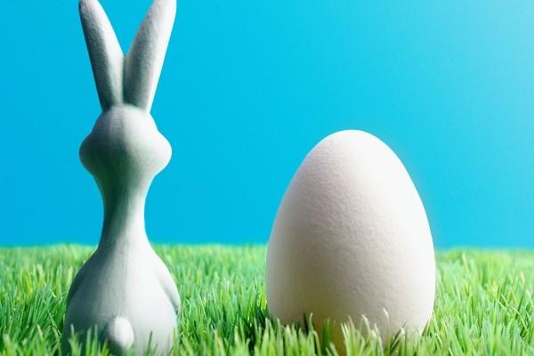 Conejo de Pascua junto a un huevo