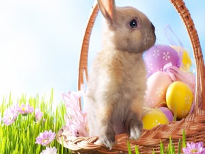 Postal: Canasta con huevos y un conejito para Semana Santa