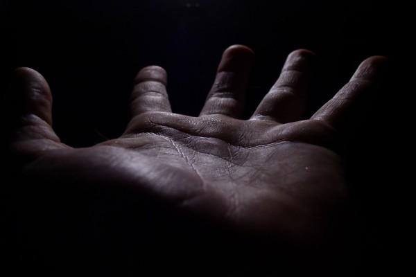 La palma de la mano