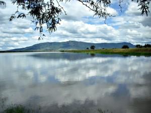 Postal: Lago en el municipio de La Barca (Jalisco, México)
