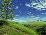Un paisaje verde generado por ordenador