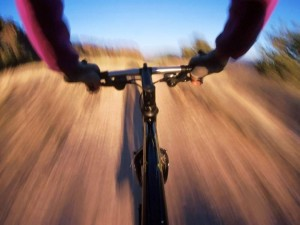 Postal: Vista desde una bici de montaña