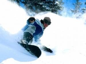 Snowboard en Snowbird, Utah