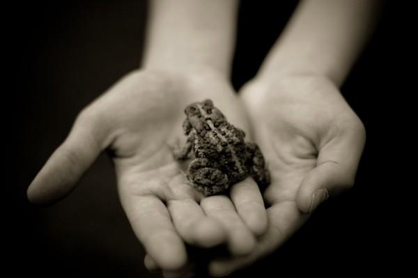 Con una rana en las manos